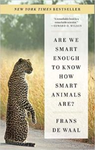 Book cover for Are We Smart Enough to Know How Smart Animals Are? by Frans de Waal