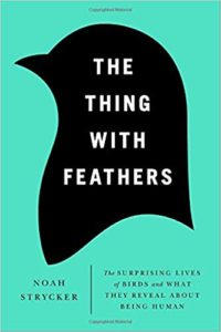 Book cover for The Thing with Feathers by Noah Strycker